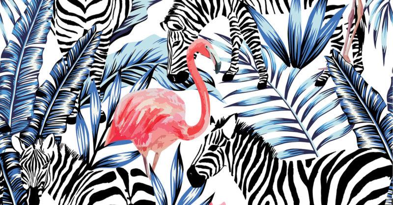 jungle-of-record